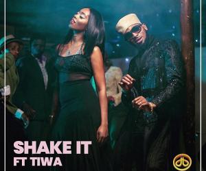 🎬: D'Banj - Shake It (feat. Tiwa Savage)