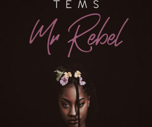 Audio: Tems - Mr Rebel